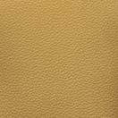 Gold - Upholstery