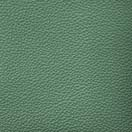 Forest Green - Upholstery